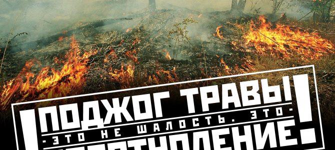 Поджог травы это не шалость — это преступление!