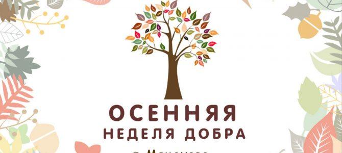 Областная добровольческая акция «Осенняя неделя добра»